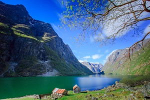 Experience the Nærøyfjord on the Pulpit Rock & Norway in a nutshell® tour - Flåm, Norway