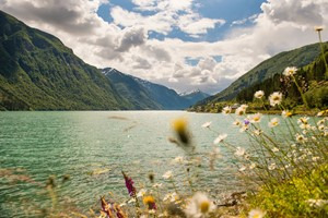 Experience beautiful Sogndal on the Sognefjord & Nærøyfjord in a nutshell tour by Fjord Tours - Sogndal, Norway