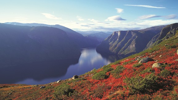 Norway-in-a-nutshell-Aurlandsfjord-in-autumn_Fjords.jpg