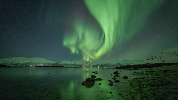 Northern lights chase in Tromsø