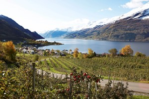 Experience Lofthus on the Hardangerfjord in a nutshell trip