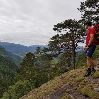 Hike to Sverrestigen mountain - Explore Voss tour by Fjord Tours - Voss, Norway