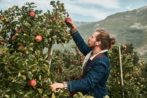 Cider tasting at Agatun Farm - Cider tour in the Hardangerfjord  -Hardanger, Norway