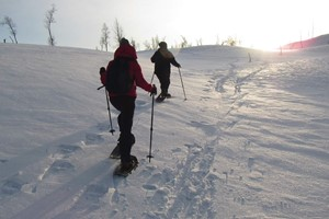 Snowshoe Hiking Tour in Bodø