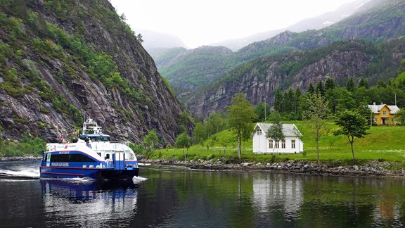 Fjord Cruise Bergen - Mostraumen Activity