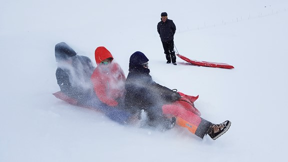 Winter fun in Eidfjord - activity