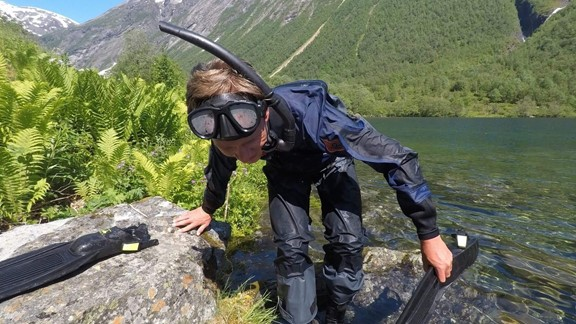 Snorkling in Stranda- Norway