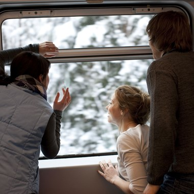 The Bergen Railway  - Hardangerfjord in a nutshell winter tour by Fjord Tours - Bergen, Norway