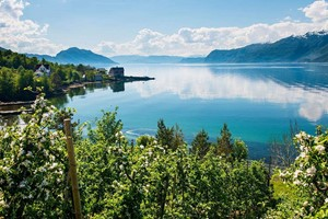Cider Experiences in Hardanger