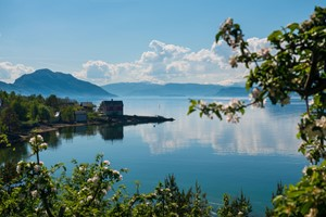 Experience the Romantic Hardanger on the Hardangerfjord in a nutshell tour & Rosendal - Hardangerfjord , Norway