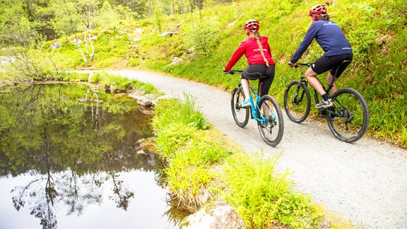 Mountainbike Rental Mount Floyen