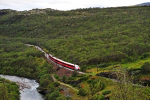Dovre Railway through the forest -  Dovre, Norway