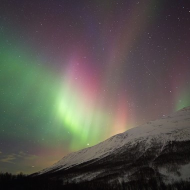 Experience the magical Northern Lights on the Northern Lights & Norway in a nutshell® tour by Fjord Tours