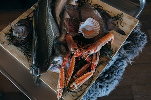 Traditional food - Norwegian sea food