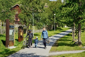 Biking in Geilo, Norway